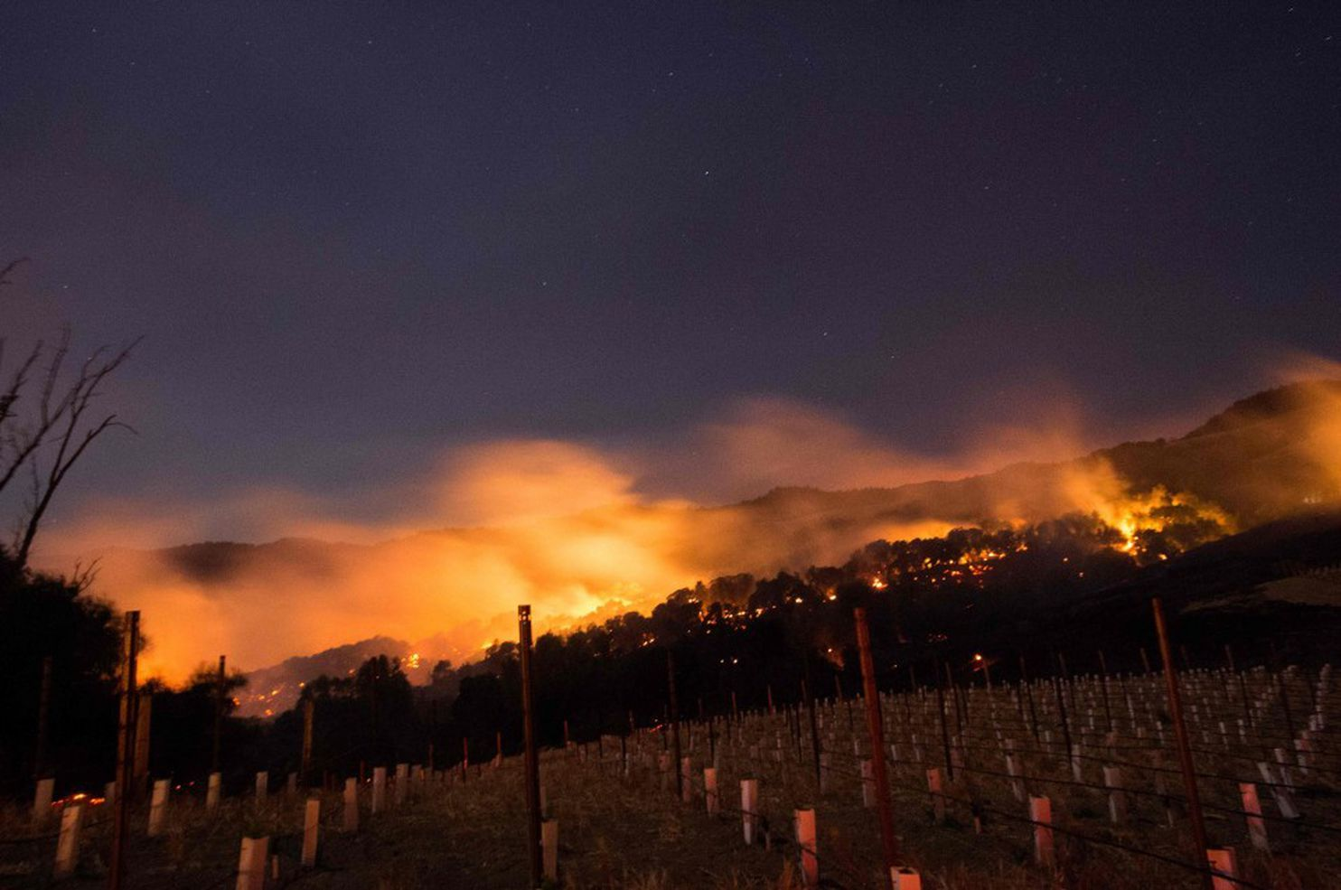 napa-sonoma-santa-rosa-fires-ravage-northern-californias-wine-country-TheNewsTrend.jpg